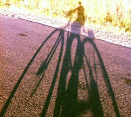 shadow bike
