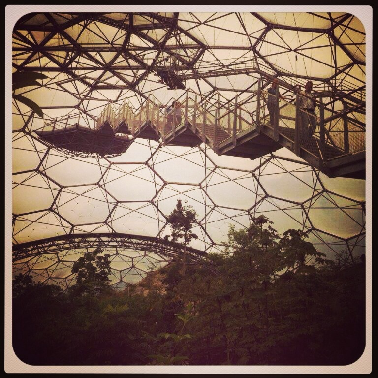The hexagon shapes make up this biome at The Eden Project