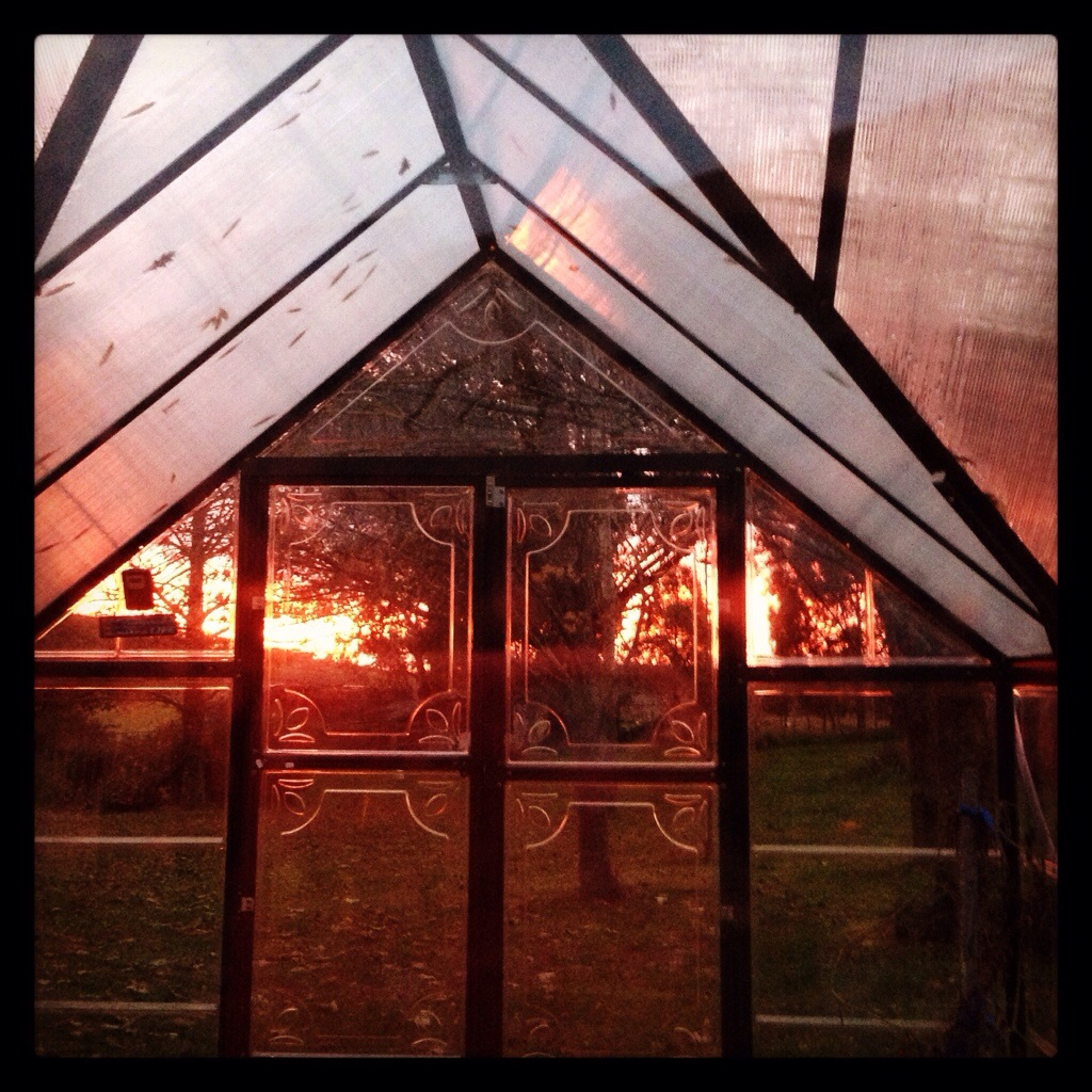 Fire through the sunroom