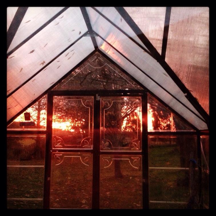 Fire through the sunroom
