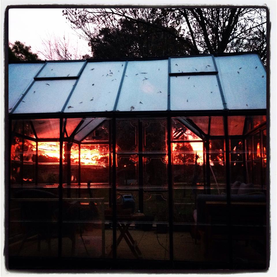 Sunset through the sunroom