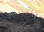 Sunrise at Annapurna Base Camp