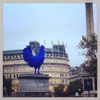 Big blue cockerel in London