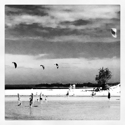 Kites at the beach