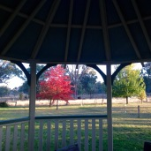 Looking through the gazebo