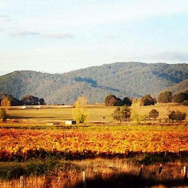 Awesome autumn colours