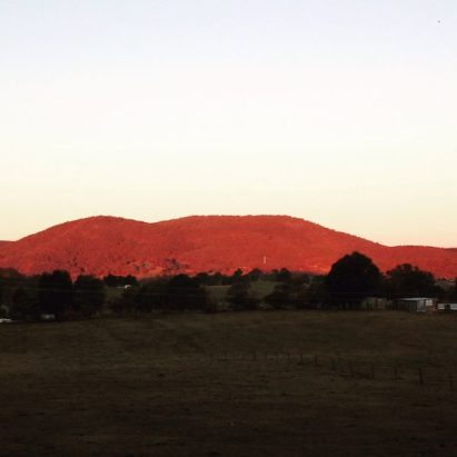 The hills of Tumbarumba are alive with colour