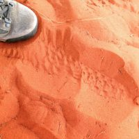 Grounded on the red earth of Uluru