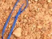 Shoelace undone