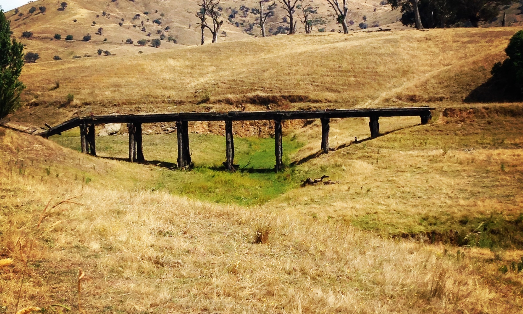 Trestle bridge from old railway days