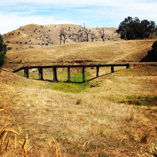 Trestle bridge from old railway days