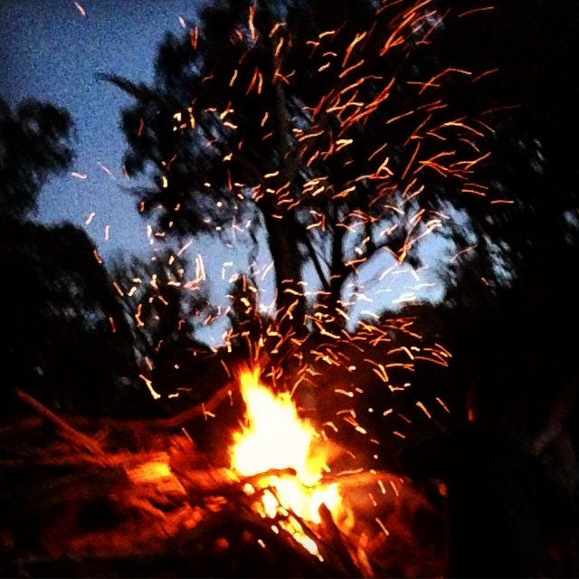 Bonfire night in the garden