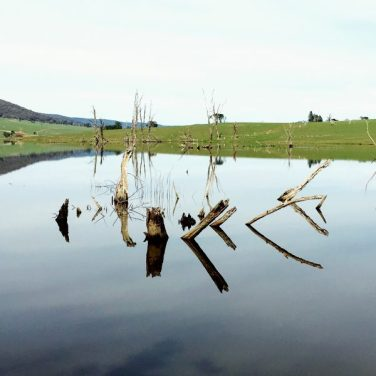 Still water of Mannus Lake