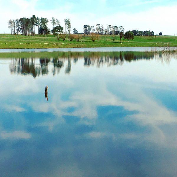 Mannus lake near Tumbarumba