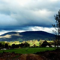 Green green grass of home in Tumbarumba