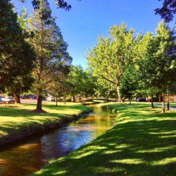 Tumbarumba Creekscape