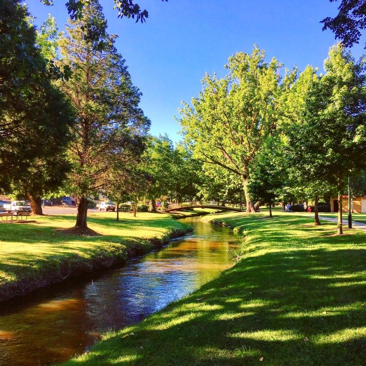 The creekscape