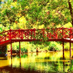 One of the bridges over the lake at Rippon Lea