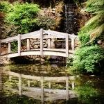 Bridge at the bottom of the garden