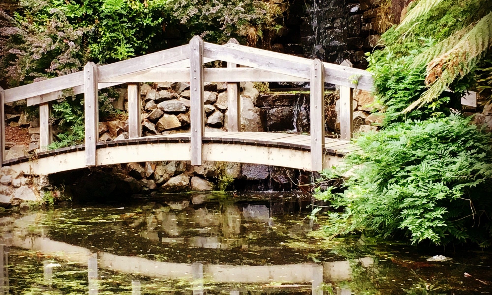 Bridge at the bottom of the garden