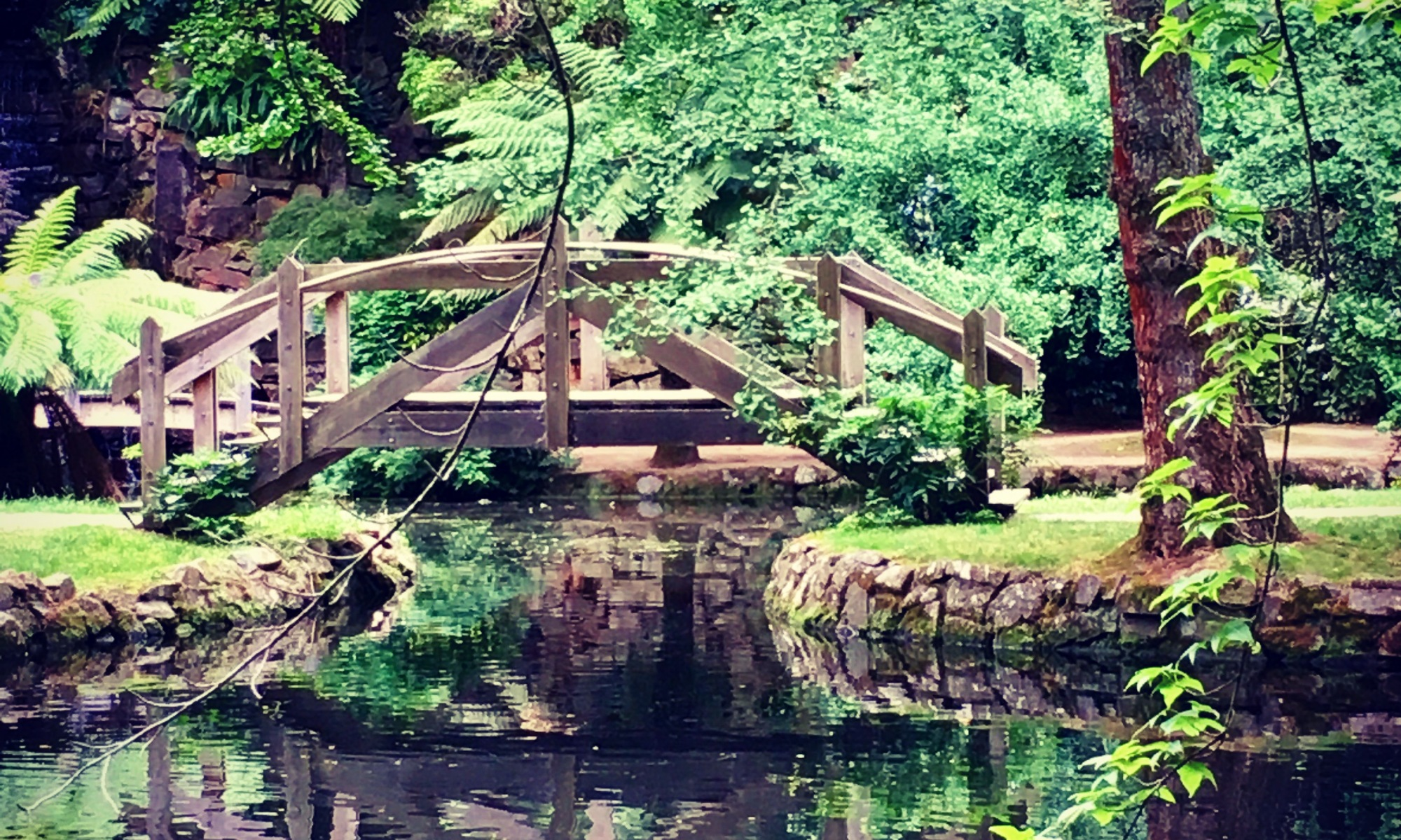 Bridge in the garden