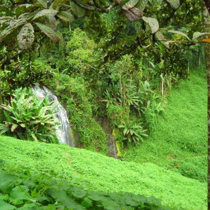 Gorgeous waterfall in Kokoda