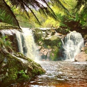 Halls Falls at Pyengana Tasmania