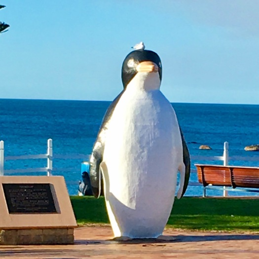 Penguin statue at Penguin Tasmania with seagull on his head