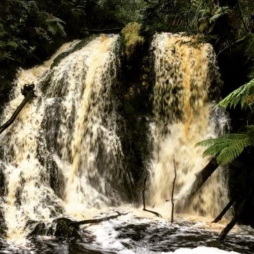 Hogarth Falls Strahan