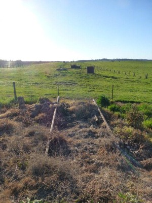 Disused railway corridor near Tumbarumba waiting to be made into a rail rail for cyclists and walkers