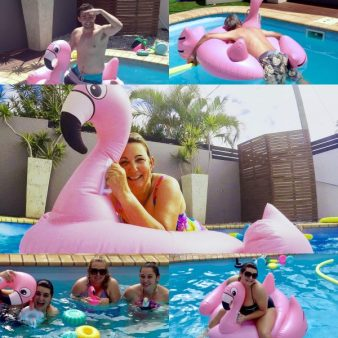 Pink Flamingo fun in the pool on a summer's day