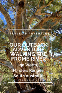 Walking the Frome River in South Australia's Flinders Ranges on an outback Aussie adventure