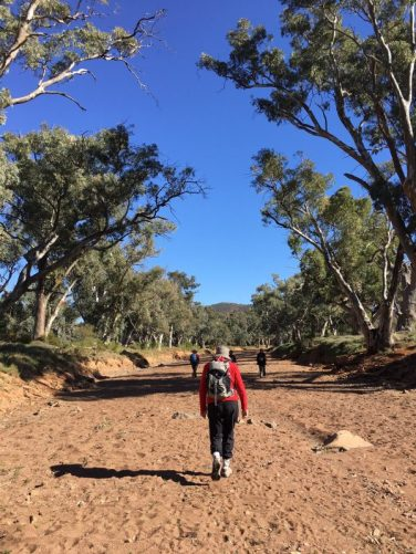 Walking in the dry riverbed of the Frome River in South Australia's Flinders Ranges
