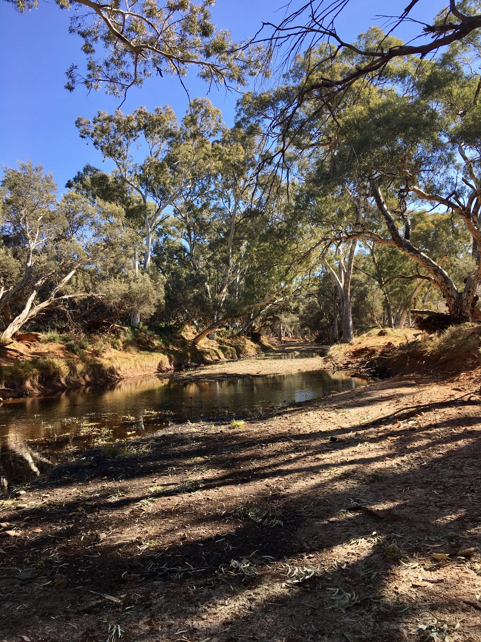 The riverbed of the Frome River in the Flinders Ranges