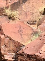 Lizard rock engraving dating back 45000 years, in the Flinders ranges