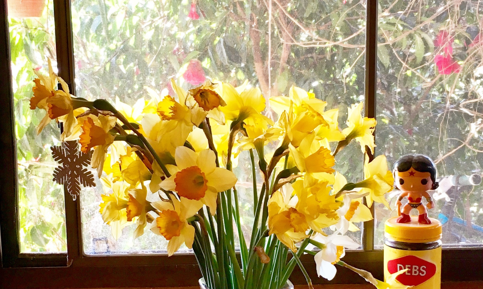View through the window on a sunny spring day