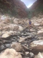 Trekking in the West Macdonnell Ranges