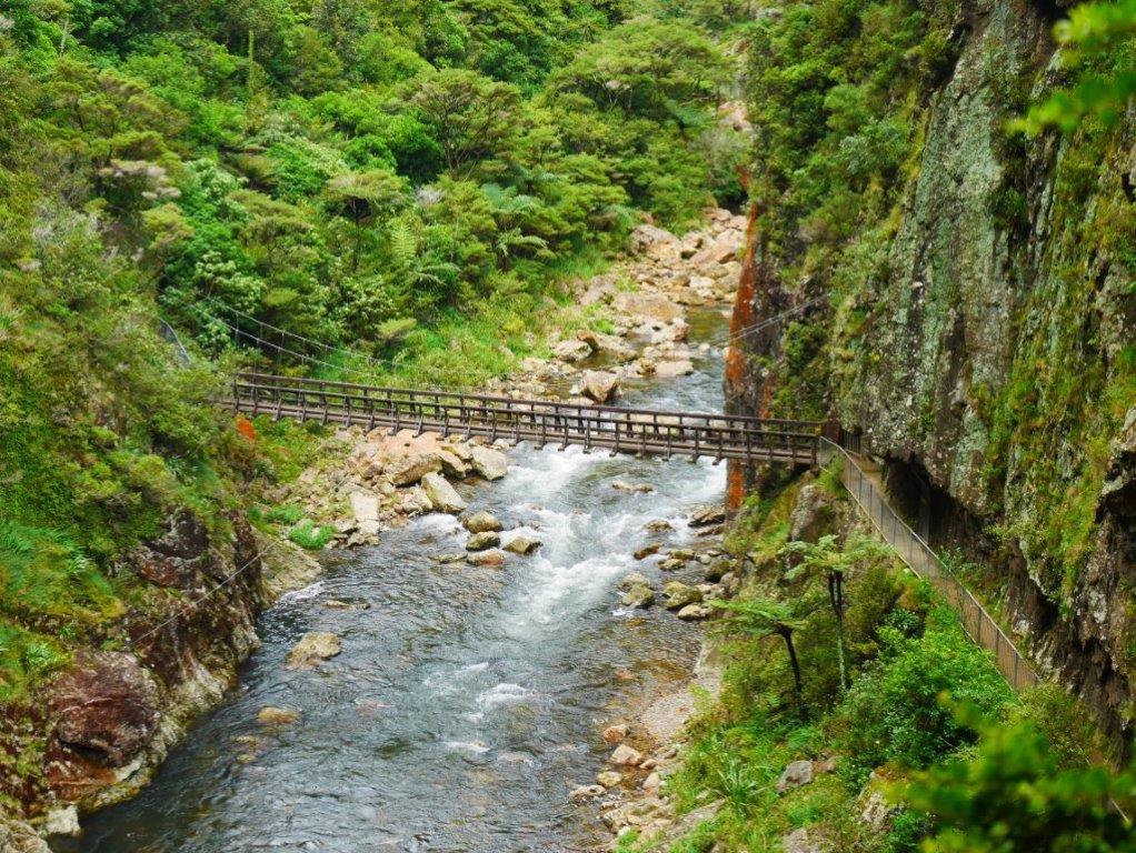 karangahake gorge bridge 2