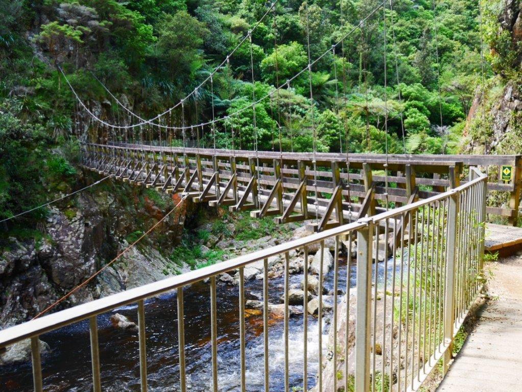 Karangahake gorge bridge on Hauraki Rail Trail