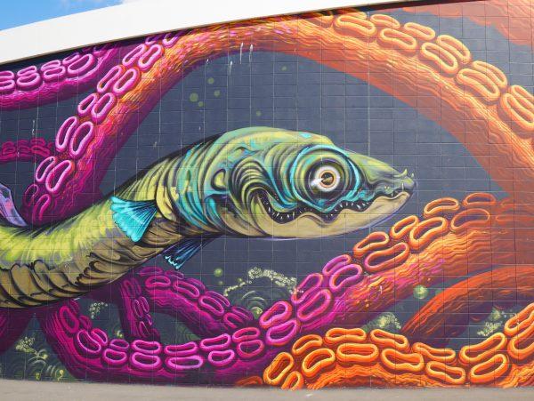 Napier Murals