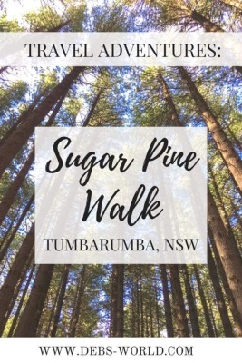 Sugar Pine walk near Tumbarumba NSW Australia