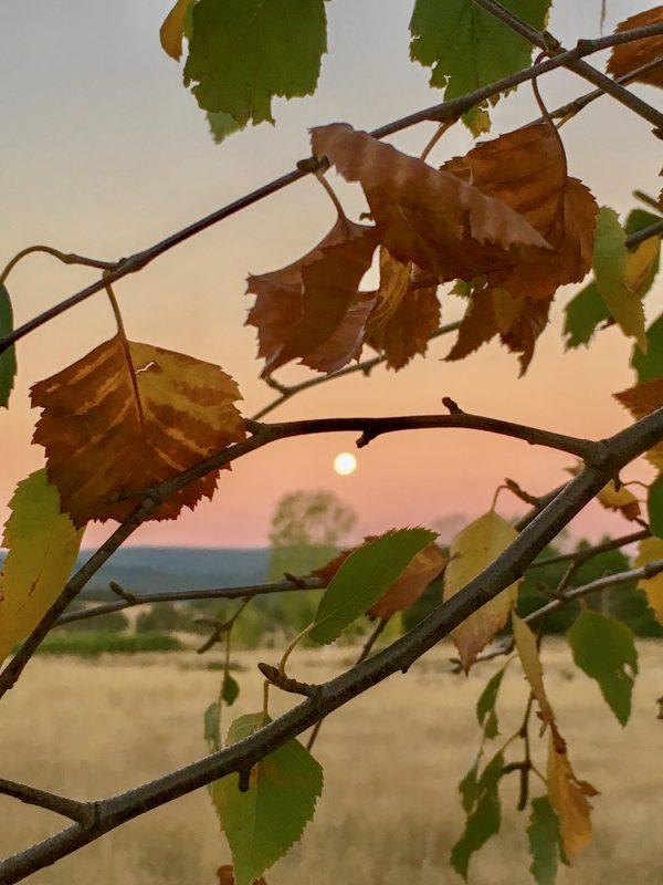 Moon rise on Good Friday