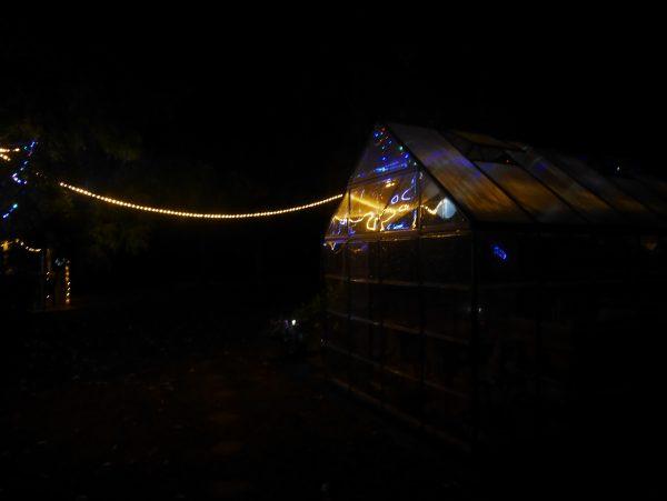 The bright lights of Tumbarumba at night