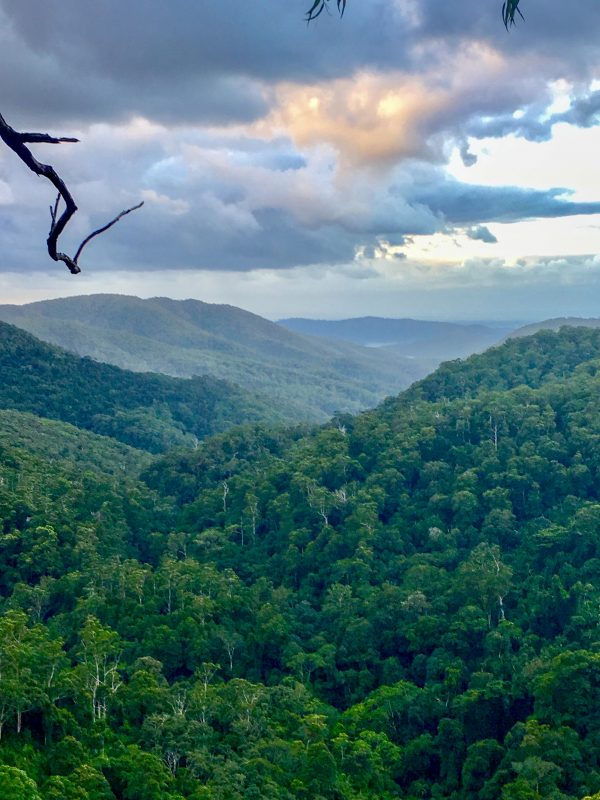 Majestic views from Springbrook on the Gold Coast hinterland