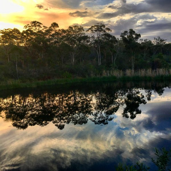 A bush sunset with reflection on the dam