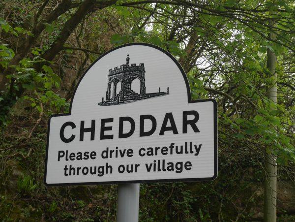 cheddar sign