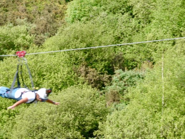 Taking in the view on the zip wire