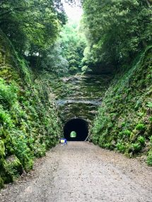 The Shute Shelve Tunnel