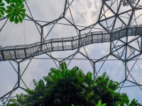Look up at the Eden Project