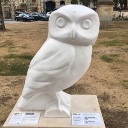 Meet Hospit'owl Bath UK